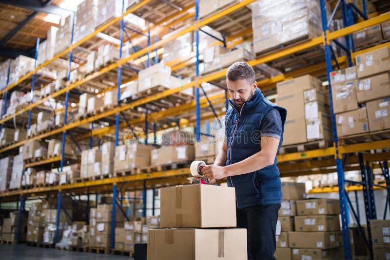 Boîtes en carton masculines de cachetage de travailleur d'entrepôt photo libre de droits