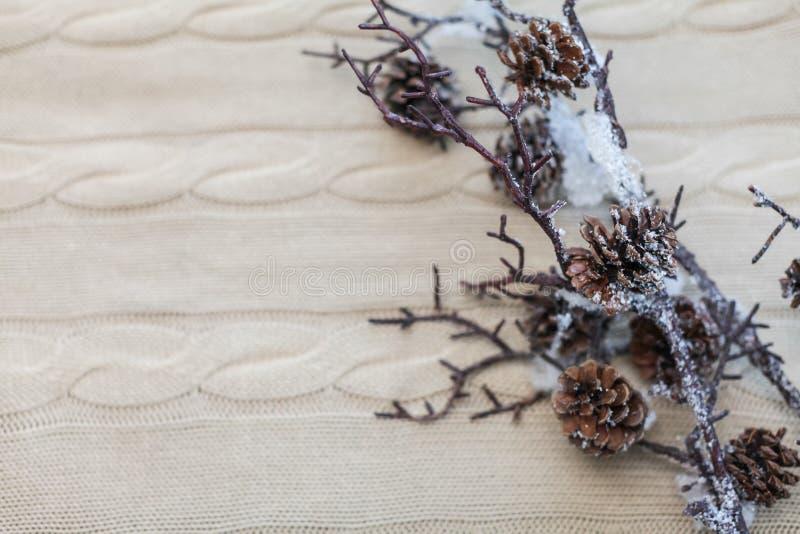 Boże Narodzenia i nowego roku skład Zakończenie w górę śniegu rozgałęzia się z rożkami na trykotowym białym tle z kopii przestrze fotografia stock