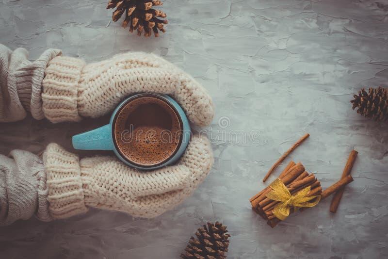 Boże Narodzenia i nowego roku wygodny wakacyjny skład z cynamonem, kobiet ręki w mitynkach, sosna rożek, kubki z kakao lub fotografia stock