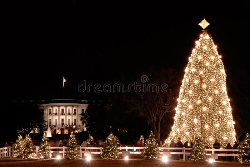 boże narodzenia mieścą krajowego drzewnego biel obrazy royalty free
