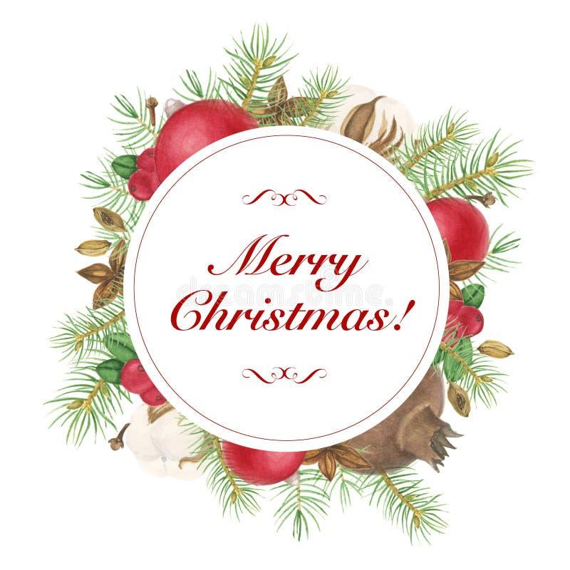 Boże Narodzenia obramiają z pikantność, gałąź drzewo i dekoracją, akwarela obraz royalty ilustracja