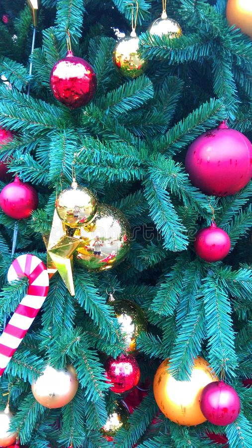 Boże Narodzenia są magicznym porą roku Let's część magia z each innym ten całkowitym sezonem w nowym roku i zdjęcie stock