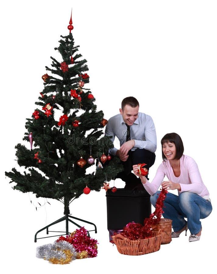 boże narodzenia target1000_0_ drzewa zdjęcia royalty free