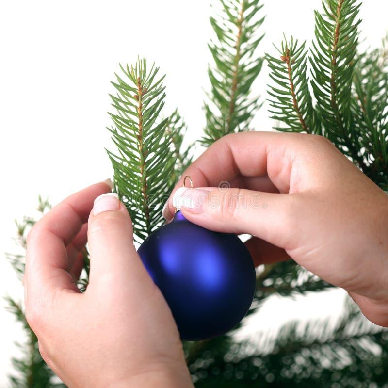 boże narodzenia target684_0_ drzewa zdjęcie royalty free