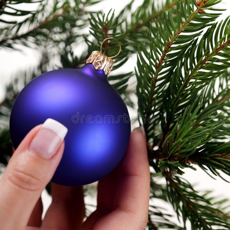 boże narodzenia target920_0_ drzewa fotografia stock