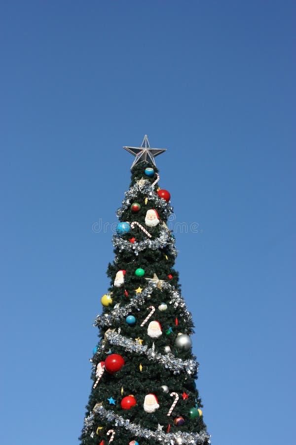 Boże Narodzenia w Disney świacie, drzewko palmowe vs tła Baikal jeziora sosna zdjęcie royalty free