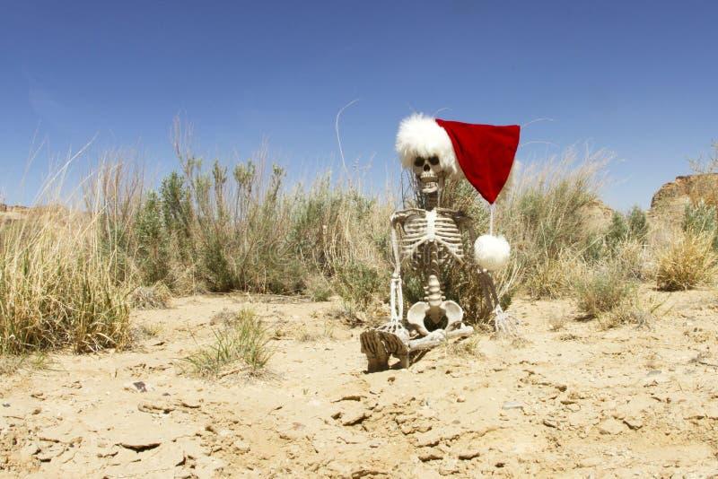Boże Narodzenia w pustyni zdjęcie stock