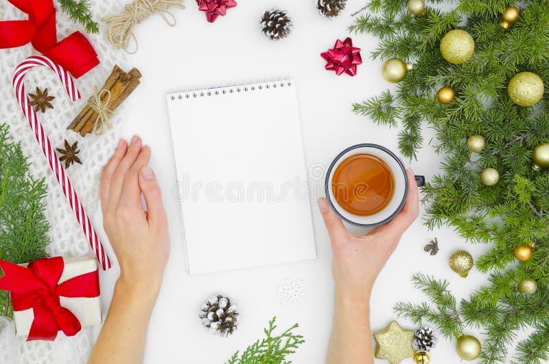 Boże Narodzenia Wyśmiewają w górę Ślimakowatego notatnika, pusty białej księgi prześcieradło Odgórny widok kobiet ręk chwyty herb zdjęcie stock