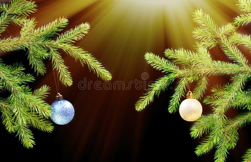 boże narodzenie ciemności ornamentuje drzewa obrazy royalty free