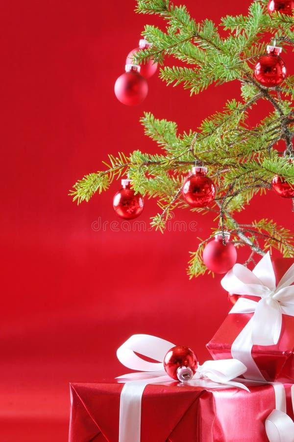 boże narodzenie czerwono drzewo prezent zdjęcia royalty free