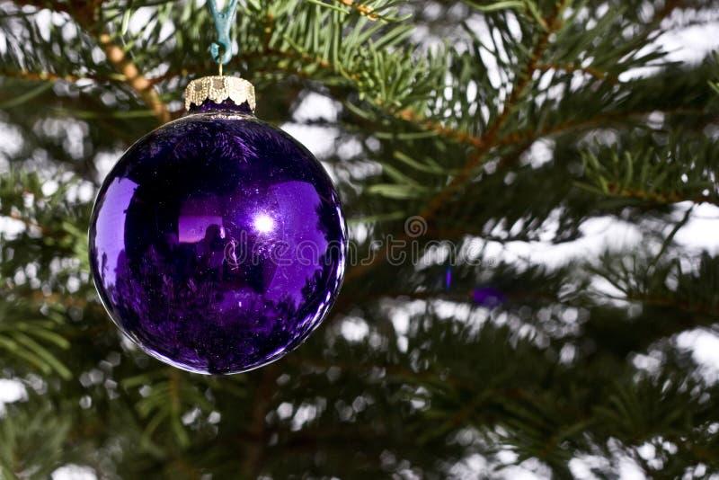 boże narodzenie dekoraci purpury obraz royalty free