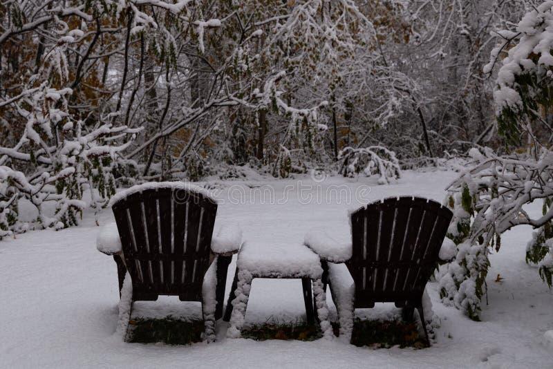 Boże Narodzenie ornamenty na sprig zieleń, na bielu zdjęcie stock