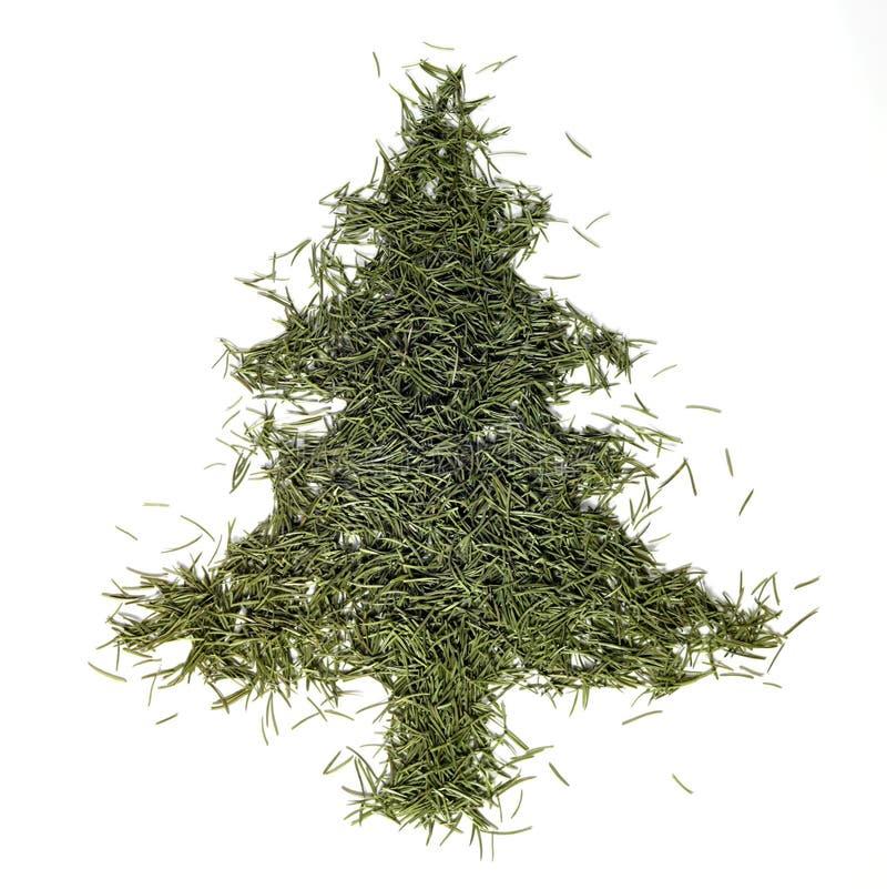 bożego narodzenia drzewo jedlinowy igielny zdjęcie stock
