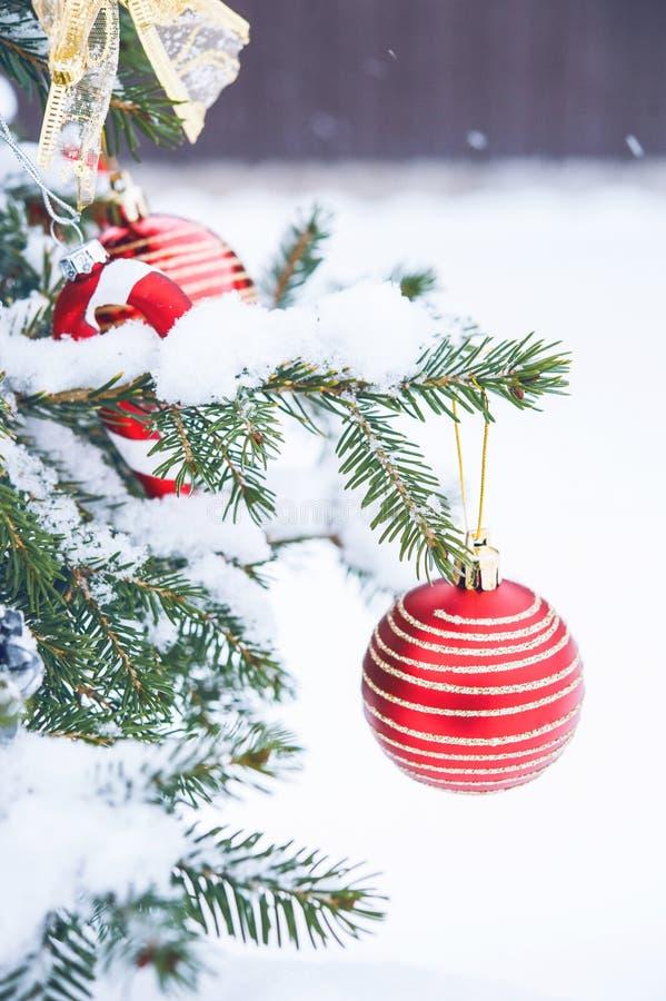 Bożenarodzeniowa piłka na choince w śniegu zdjęcia stock
