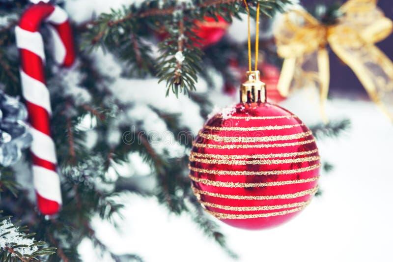Bożenarodzeniowa piłka na choince w śniegu zdjęcie royalty free