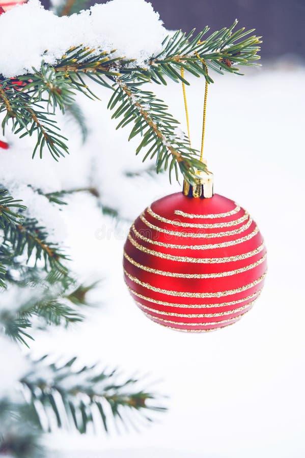 Bożenarodzeniowa piłka na choince w śniegu obraz stock