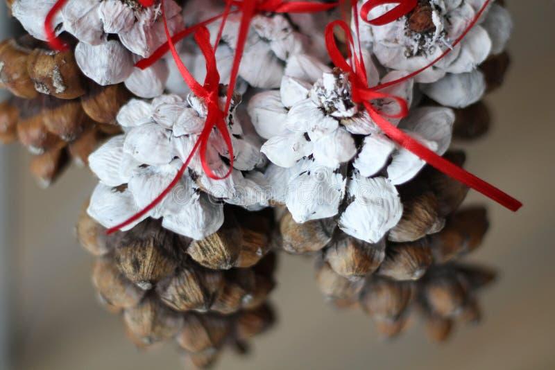 Bożenarodzeniowa sosna konusuje obwieszenie od czerwonych faborków szczęśliwego nowego roku, Doskonalić szczęśliwi nowy rok obraz obraz stock