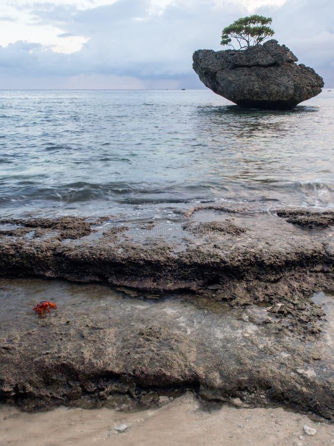 Bożenarodzeniowa wyspa, Australia zdjęcie stock