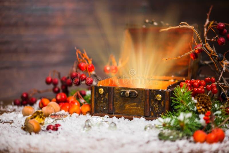 Bożenarodzeniowa zimy czarodziejka z lekkim cudem w rozpieczętowanej klatce piersiowej Backg obrazy stock