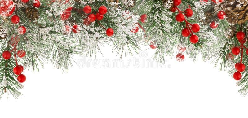 Bożenarodzeniowa zimy rama zielona jodła lub świerczyna rozgałęzia się z śniegiem, czerwonymi jagodami i rożkami odizolowywającym fotografia royalty free