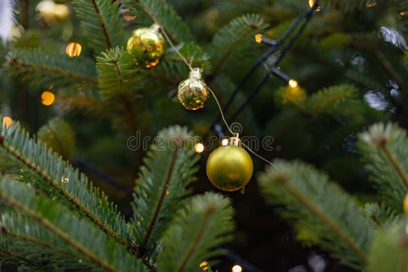 Bożenarodzeniowe piłki na drzewie zdjęcia stock