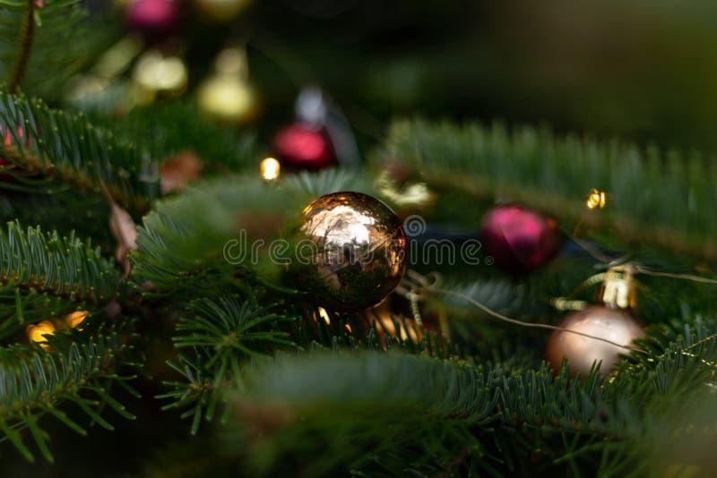 Bożenarodzeniowe piłki na drzewie obrazy stock