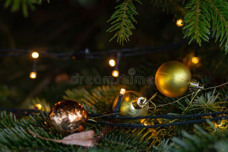 Bożenarodzeniowe piłki na drzewie obrazy royalty free