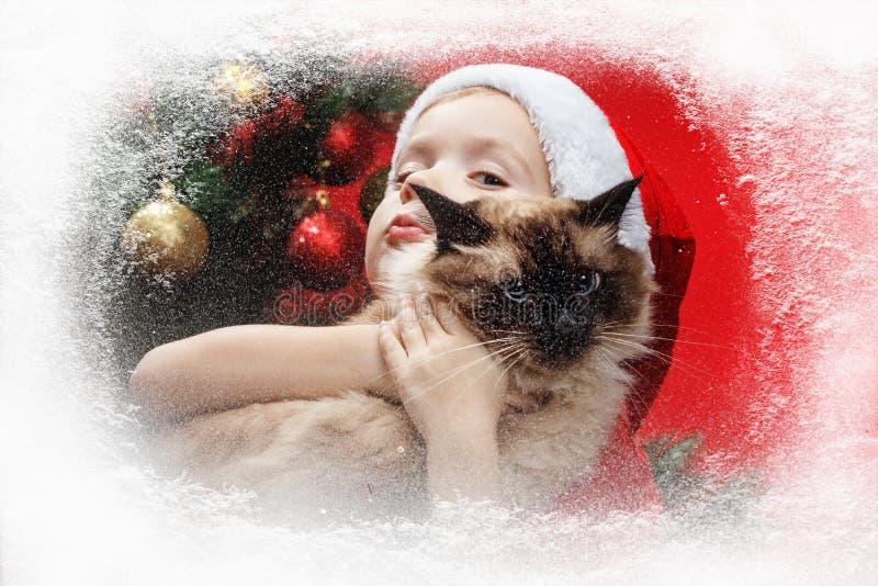 Bożenarodzeniowej nocy chłopiec z Santa kapeluszem i mały kot jesteśmy przyglądający przez okno Mróz i śnieg na okno obrazy royalty free