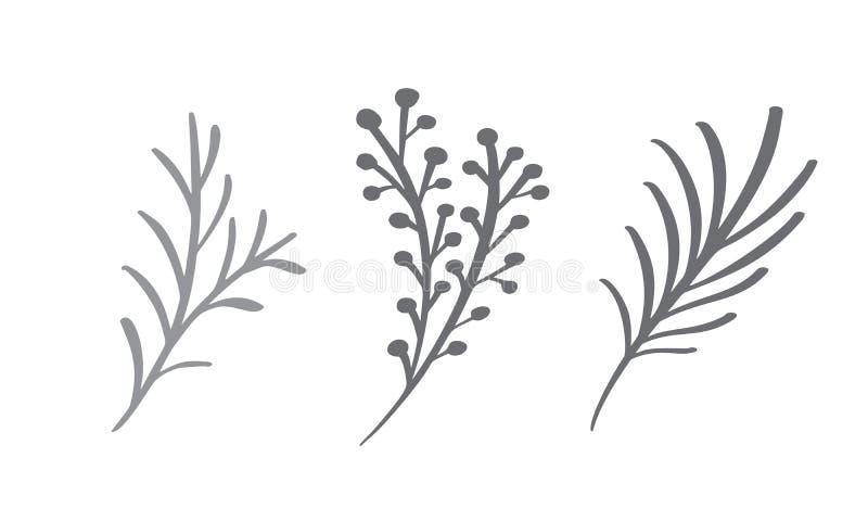 Bożenarodzeniowi dekoracyjni gałęziaści elementy projektują kwiecistych liście w scandinavian stylu Wektorowa handdraw ilustracja royalty ilustracja
