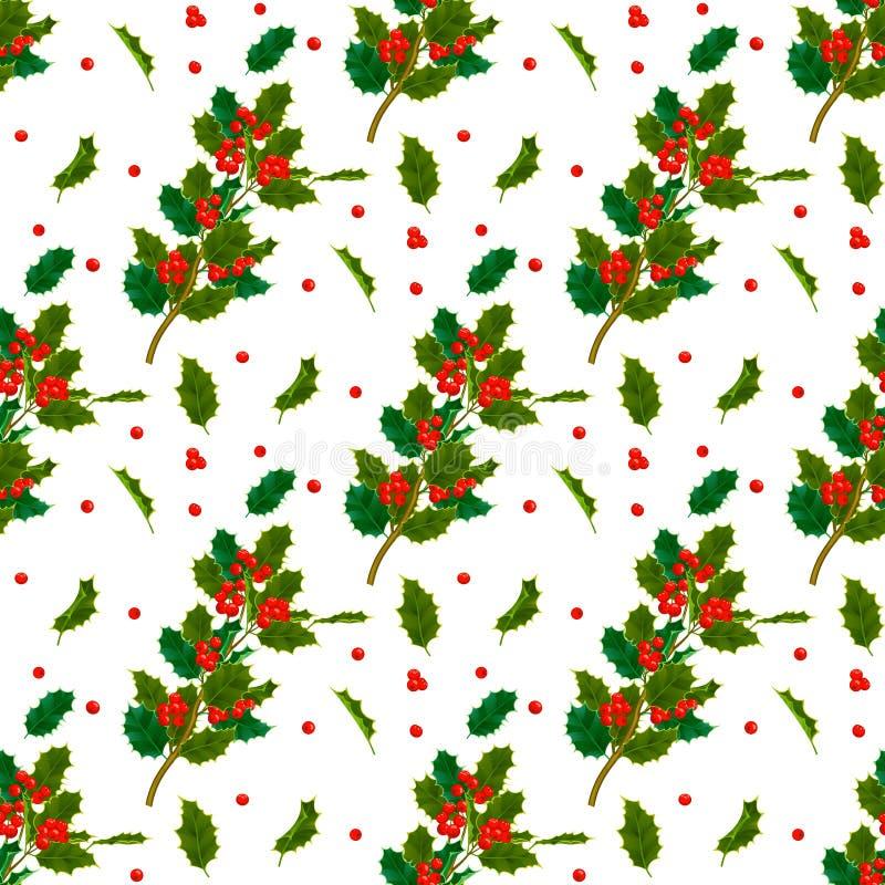 Bożenarodzeniowi dekoracyjni liście holly i gałąź z czerwonych jagod wiecznozieloną zimą kwitną kwiecistej rośliny bezszwowego wz ilustracji