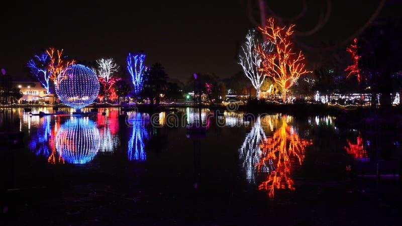 Bożenarodzeniowi Kolorowi światła w Zoolights festiwalu obraz royalty free