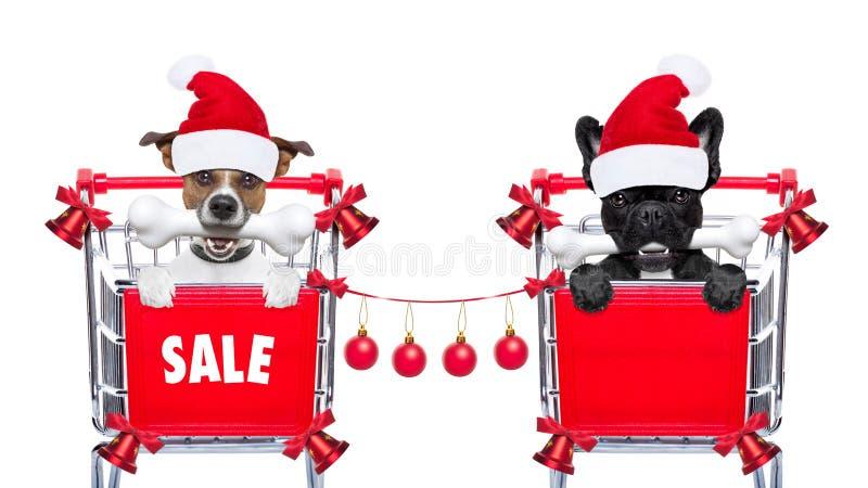 Bożenarodzeniowi sprzedaż psy zdjęcia royalty free