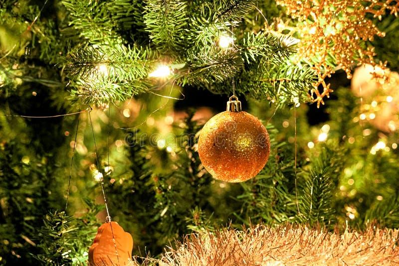 Bożenarodzeniowy balowy ornamentu obwieszenie w drzewie zdjęcia stock