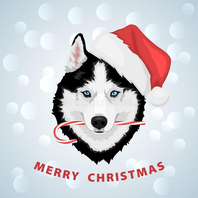 Bożenarodzeniowy husky pies ilustracji