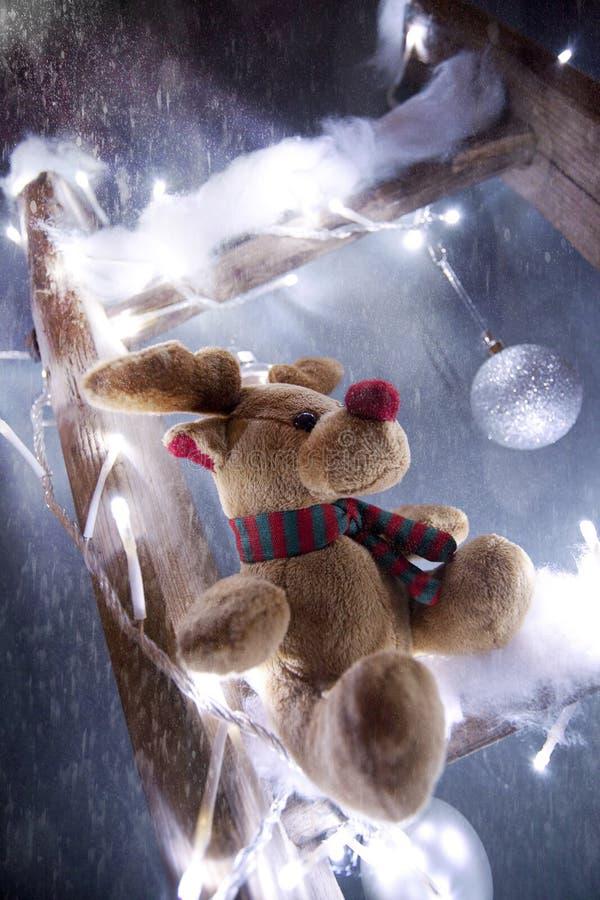 Bożenarodzeniowy reniferowy Rudolf fotografia stock