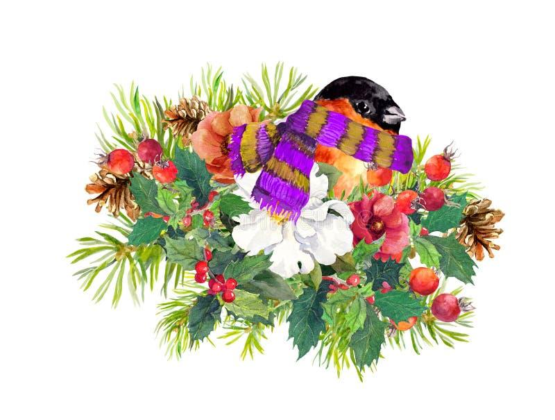 Bożenarodzeniowy skład - finch ptak, zima kwitnie, świerkowy drzewo, jemioła akwarela ilustracja wektor