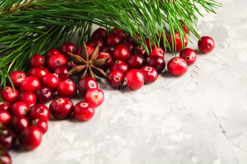 Bożenarodzeniowy tło z świeżym cranberry, jedlinowym drzewo i gwiazda obraz royalty free