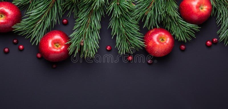 Bożenarodzeniowy tło z gałąź, czerwonymi jabłkami i cranberries, Ciemny drewniany stół zdjęcia stock