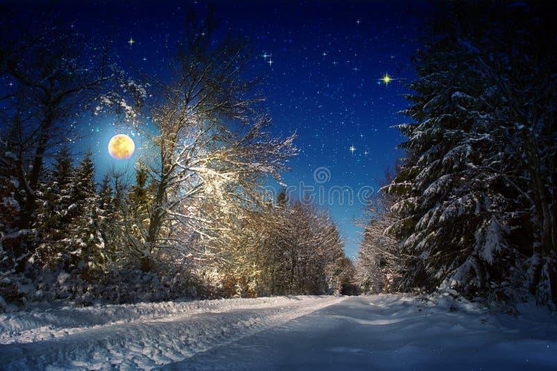 Bożenarodzeniowy tło z gwiazdami i dużą księżyc w zima lesie obrazy stock