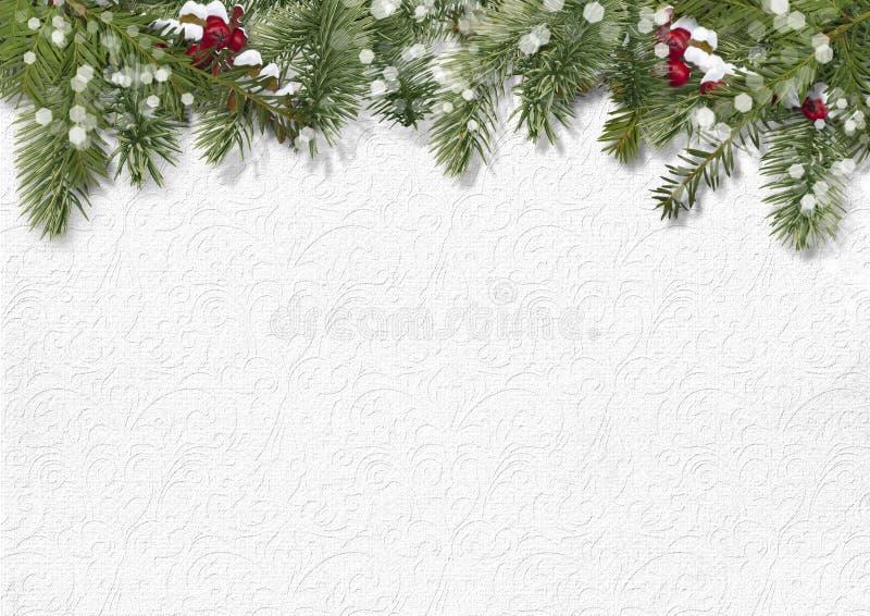 Bożenarodzeniowy tło z holly, firtree zdjęcia royalty free
