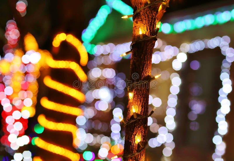 Bożonarodzeniowe Światła - tło z drzewa światła szczegółem zdjęcie royalty free