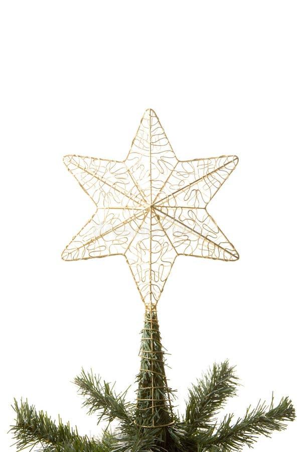 bożych narodzeń gwiazdy wierzchołka drzewo obraz stock