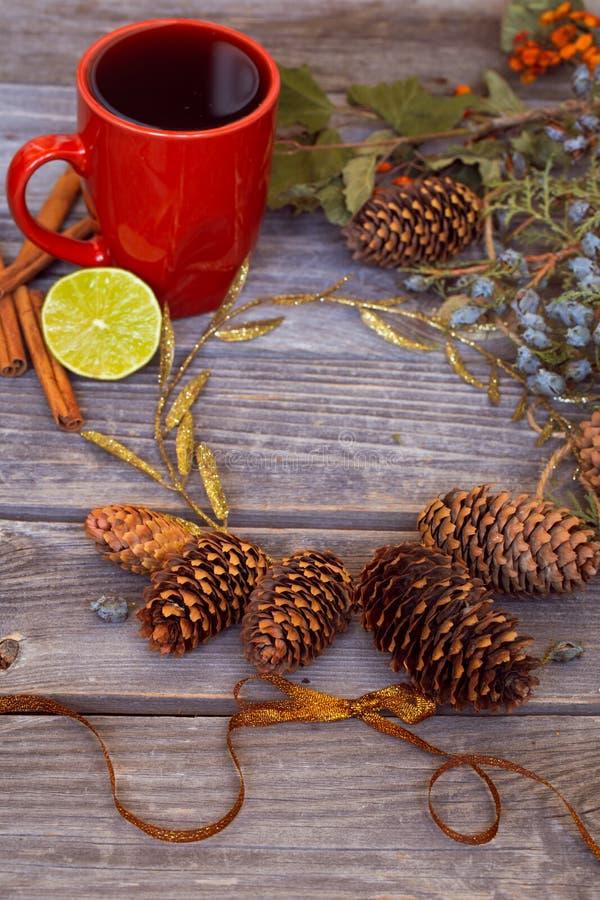 Bożych Narodzeń wciąż życie z czerwoną filiżanką herbata, sosnowi rożki, cynamon zdjęcia stock