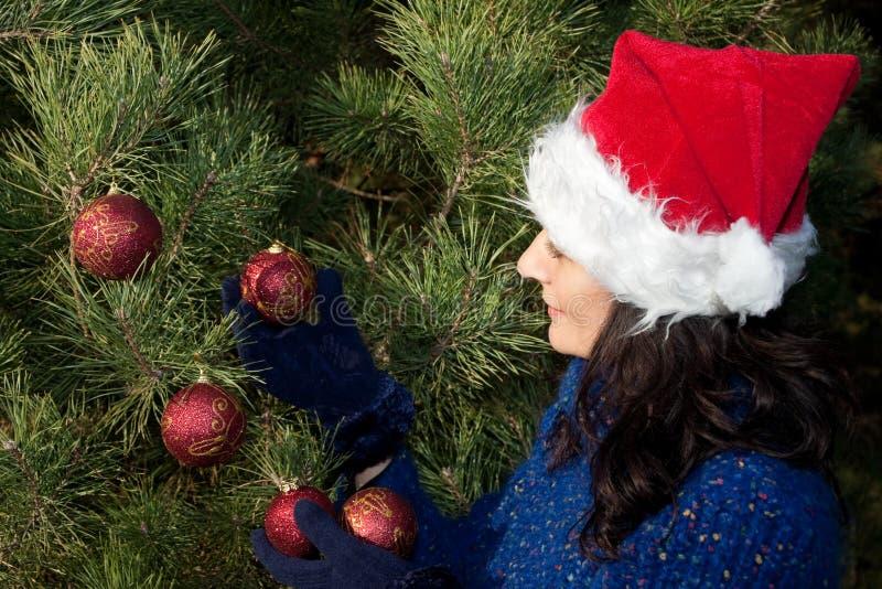 Download Boże Narodzenia Target2371_0_ Drzewa Obraz Stock - Obraz: 10928961