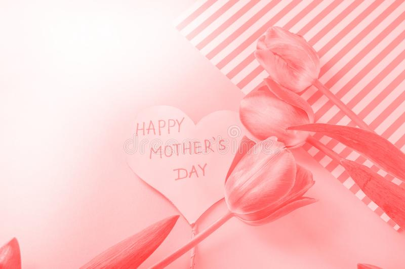 Bo korallf?rg av ?ret 2019 blommar hj?rta gjord form Valentine' s-dag abstrakt palett f?r bakgrundsf?rgdesign f?r?lskelsemod arkivbilder