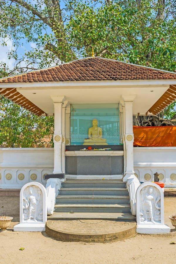The Bo Tree of Thaniwalla Devalaya. The Buddha altar at the Bo tree of Thaniwalla Devalaya Temple, Madampe, Sri Lanka royalty free stock photography