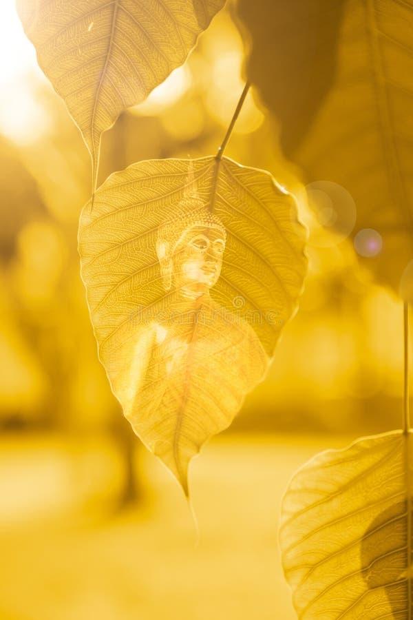 BO verlaat goud met het beeld van Boedha, Gouden Blad, Bodhi-Boom met heldere zon, macht van Boedha stock foto