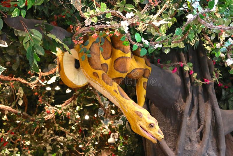 Boa σφιγκτήρας στον καφέ τροπικών δασών, Νάσβιλ Τένεσι στοκ φωτογραφία με δικαίωμα ελεύθερης χρήσης