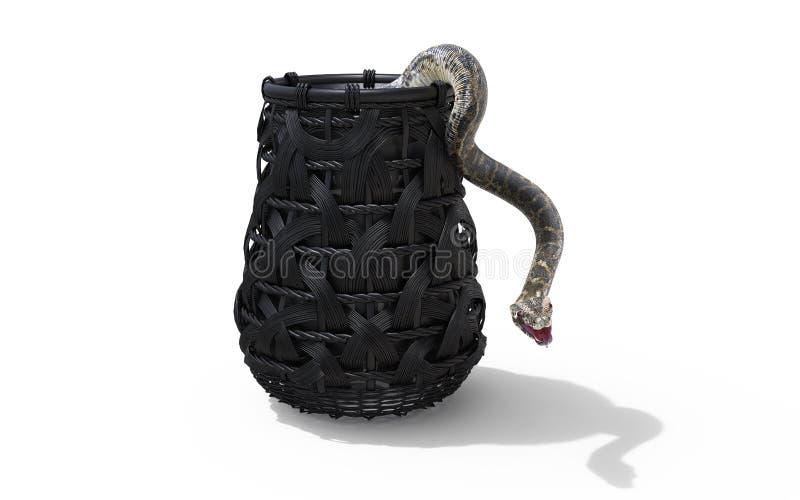 Boa Constrictor Światowy ` s Długi Venomous wąż na Białym tle w wiadrze z ścinek ścieżką ilustracji