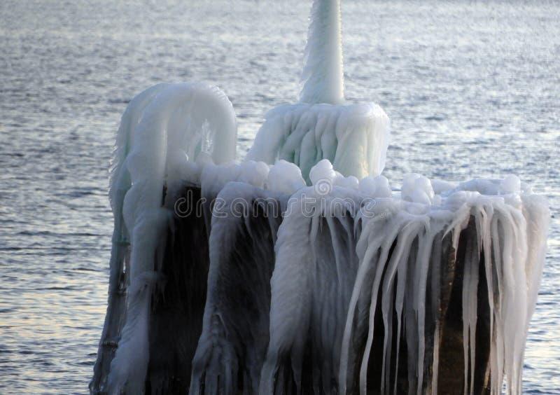 Boa coperta di ghiaccio nel lago cayuga fotografia stock